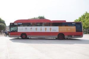 Autobús 15 aniversario Equipo Humano