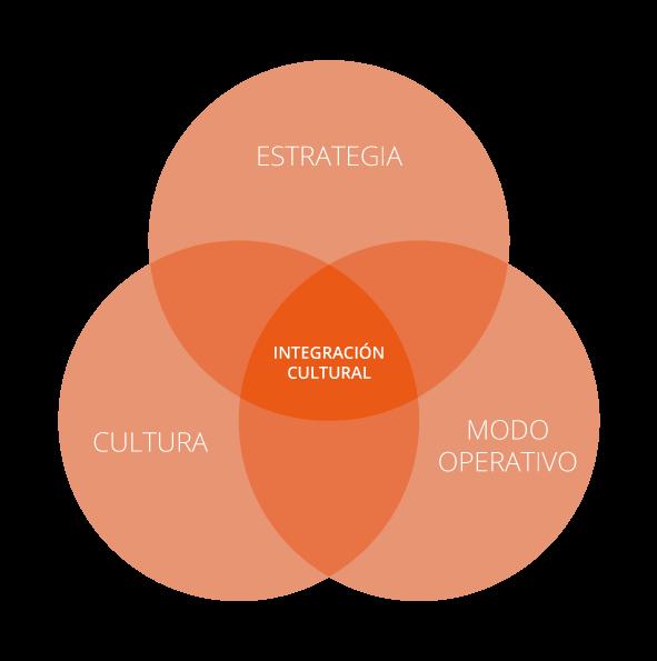 Transformación cultural