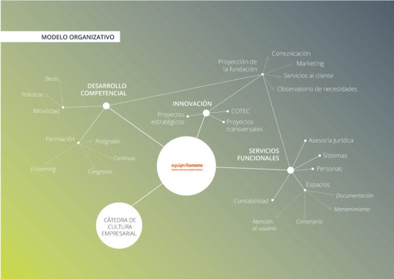 modelo organizativo fundación universitaria